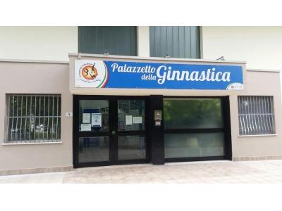 Rimini imbrattate le pareti della palestra euterpe appena for Costo della palestra giungla
